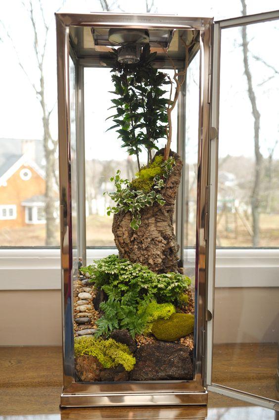 Spring Terrarium Ideas